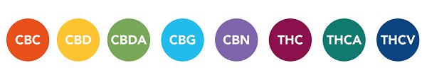 Legende Buttons zu den Vorteilen von CBD