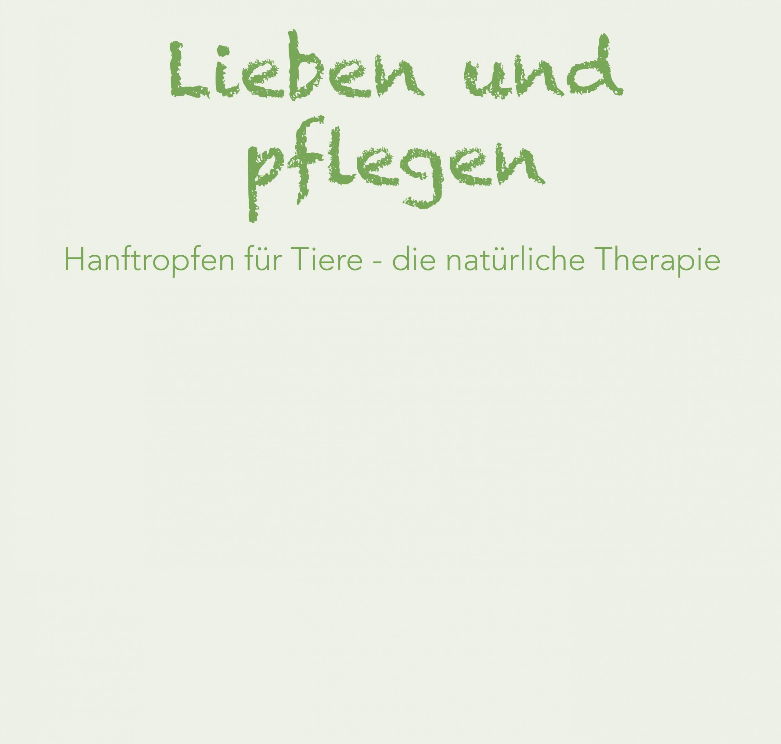 Startseite_Teaser_Lieben_und_Pflegen_Mai_2020